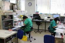 Nous punts de treball de tècnics i patòlegs
